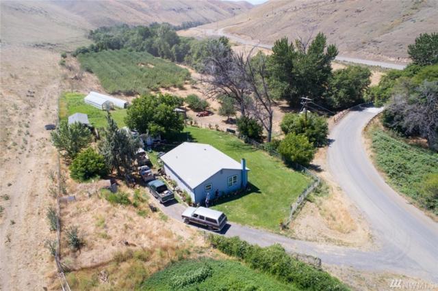 199 Alpowa Creek, Clarkston, WA 99403 (#1391506) :: Kimberly Gartland Group