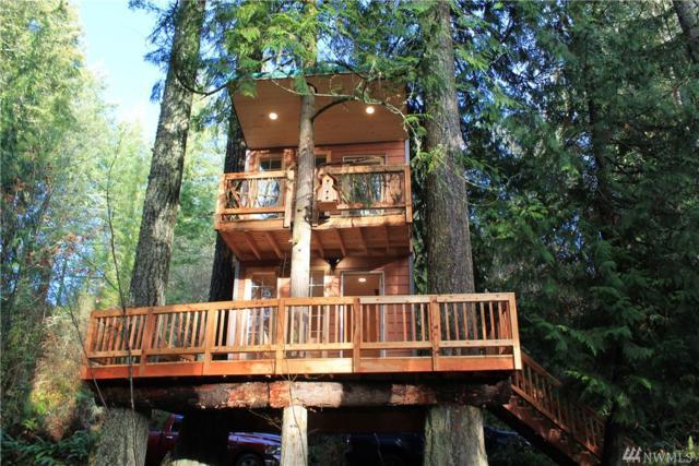 14125 Beaver Dr SE, Rainier, WA 98576 (#1392054) :: NW Home Experts