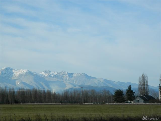 1-Lot Harrier Wy, Sequim, WA 98382 (#1392158) :: Homes on the Sound