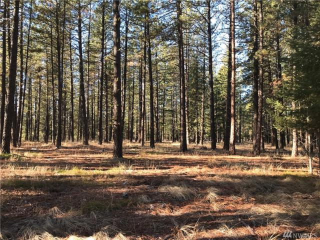 0-Lot 2 Pine Duff Dr, Cle Elum, WA 98922 (#1392170) :: Homes on the Sound