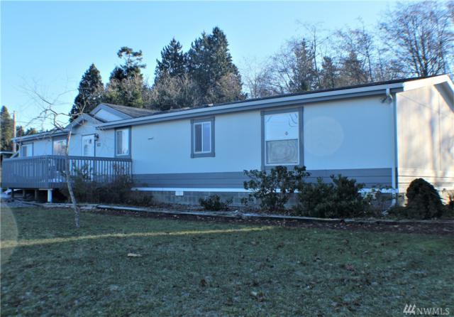 4751 Alderson Rd, Blaine, WA 98230 (#1392478) :: Ben Kinney Real Estate Team