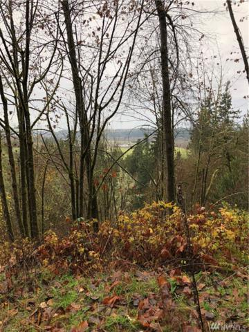 0 Orville Rd E, Orting, WA 98360 (#1392491) :: Sarah Robbins and Associates