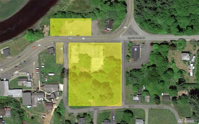 3152 State Rt 109, Ocean Shores, WA 98569 (#1392745) :: Beach & Blvd Real Estate Group