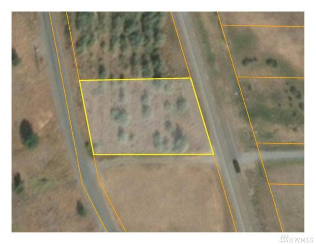 0-TBD 33Xxx Hwy 97 Lot 1, Oroville, WA 98844 (#1392954) :: The DiBello Real Estate Group