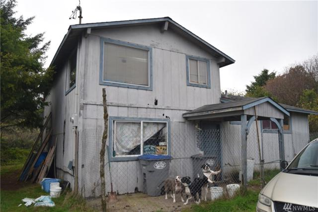 359 Pt Brown Ave NW, Ocean Shores, WA 98569 (#1393129) :: Beach & Blvd Real Estate Group