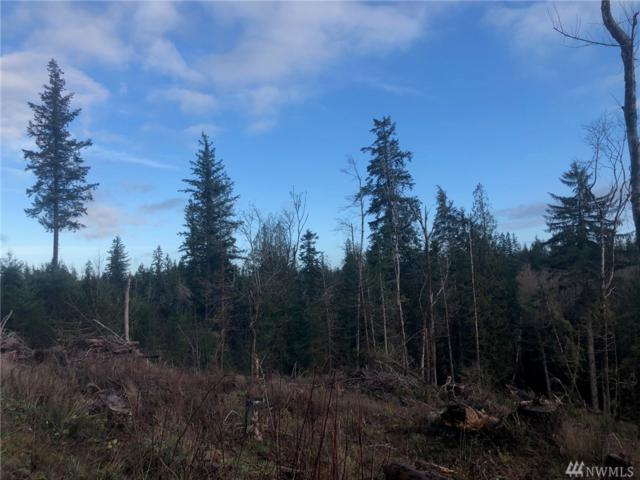 40-XX Nickelbush Rd, Quilcene, WA 98376 (#1393628) :: Pickett Street Properties