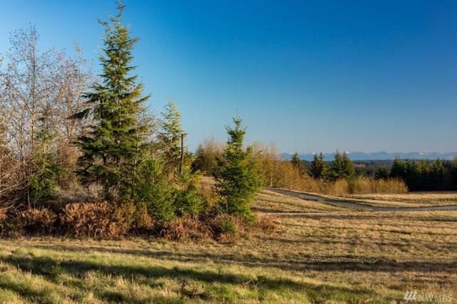 0-Lot 2 Pacific Dogwood, Greenbank, WA 98253 (#1393690) :: Pickett Street Properties