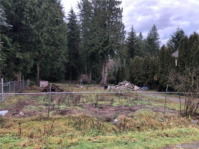 10001 228th Place SE, Woodinville, WA 98077 (#1394073) :: HergGroup Seattle