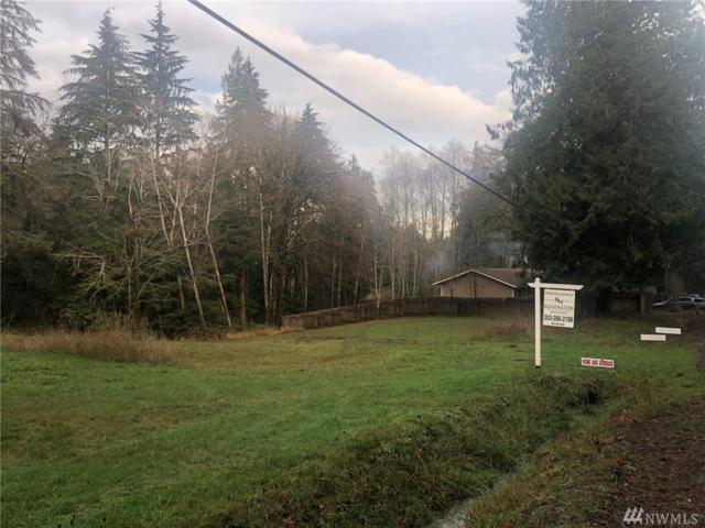 0 E Agate, Shelton, WA 98584 (#1394159) :: Ben Kinney Real Estate Team