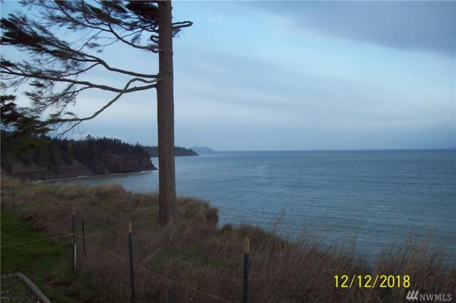 192 Cypress Circle, Port Angeles, WA 98362 (#1394177) :: Homes on the Sound