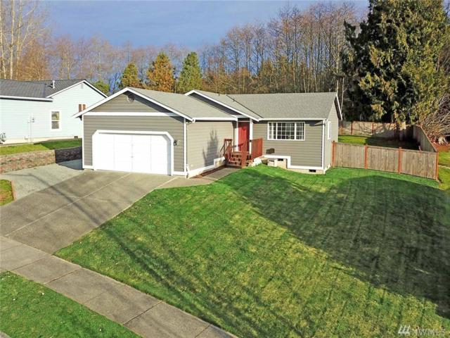 26209 77th Ave NW, Stanwood, WA 98292 (#1394288) :: Ben Kinney Real Estate Team