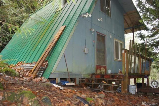 0-NSN N Shar Lane, Lilliwaup, WA 98555 (#1394807) :: Homes on the Sound