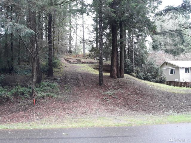 231 NE Barbara Lane, Belfair, WA 98528 (#1394899) :: Homes on the Sound