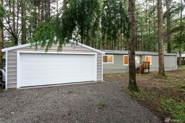 8575 Ginkgo Dr, Maple Falls, WA 98266 (#1395006) :: Pickett Street Properties