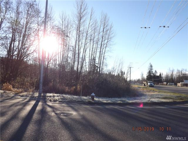 4770 Guide Meridian, Bellingham, WA 98226 (#1395093) :: Ben Kinney Real Estate Team