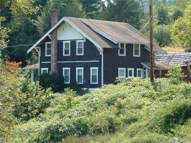 206 Lutkens Rd, Morton, WA 98330 (#1395251) :: Ben Kinney Real Estate Team