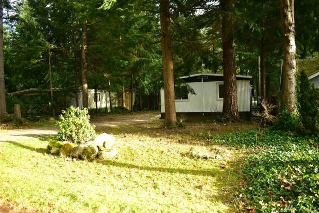 8134 Pony Express Wy, Maple Falls, WA 98266 (#1395335) :: Pickett Street Properties