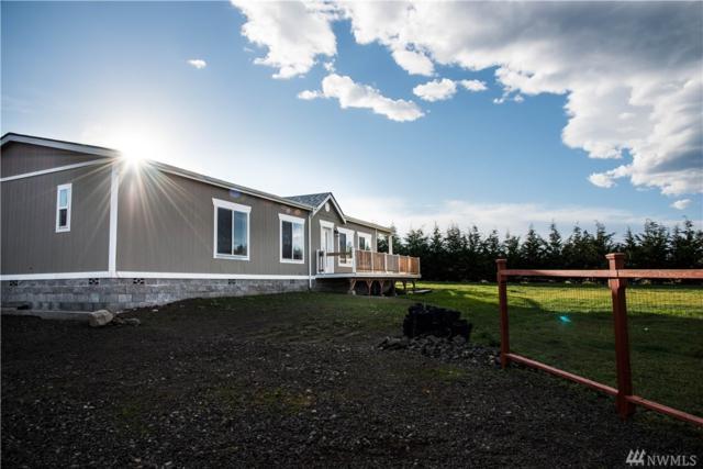 184 Triopha Lane, Sequim, WA 98382 (#1395442) :: Homes on the Sound