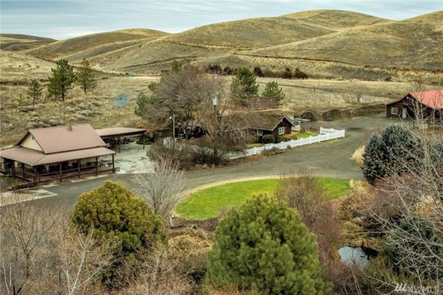 4131 Casey Rd, Prescott, WA 99348 (#1395523) :: Crutcher Dennis - My Puget Sound Homes