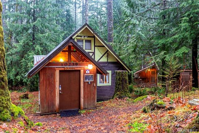 10239 Foss River Place, Skykomish, WA 98288 (#1395658) :: Homes on the Sound