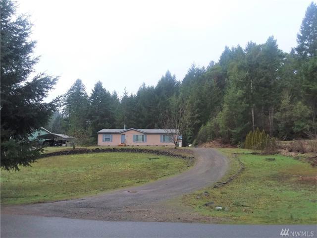 391 NE Larson Lake Rd, Belfair, WA 98528 (#1395750) :: Homes on the Sound