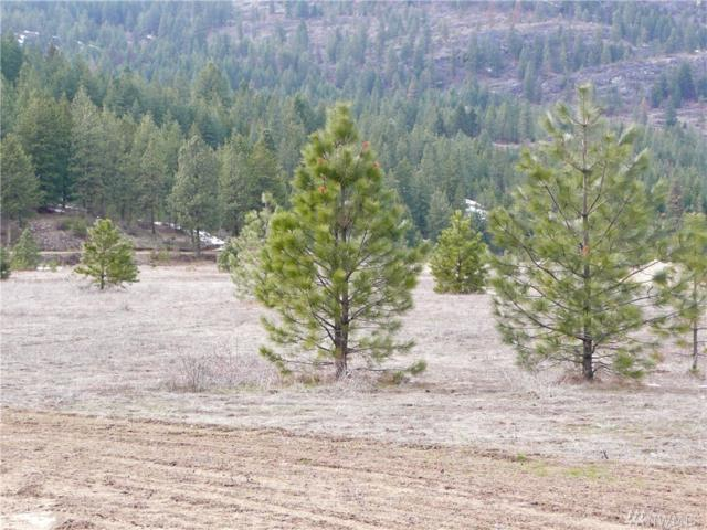 0-Lot 1 Saddle Ridge Rd, Kettle Falls, WA 99141 (#1395869) :: NW Homeseekers