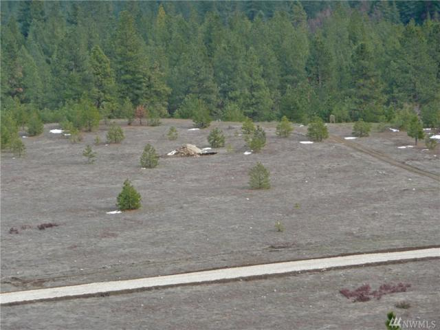 0-Lot 2 Saddle Ridge Rd, Kettle Falls, WA 99141 (#1395876) :: NW Homeseekers