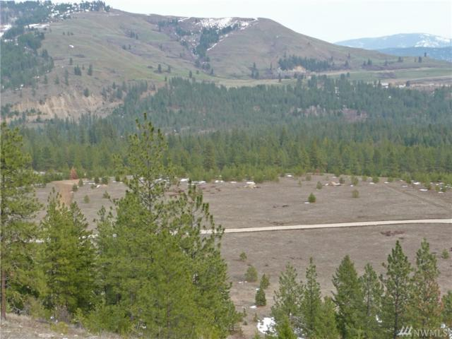 0-Lot 3 Saddle Ridge Rd, Kettle Falls, WA 99141 (#1395880) :: NW Homeseekers