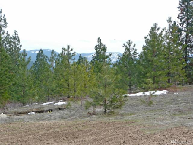0-Lots 1-3 Saddle Ridge Rd, Kettle Falls, WA 99141 (#1395925) :: NW Homeseekers