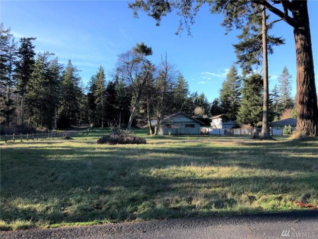 1 Fossil Bay Rd, Orcas Island, WA 98245 (#1395942) :: Homes on the Sound