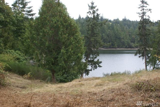 4215 N 162 Ave KP, Longbranch, WA 98351 (#1396003) :: Homes on the Sound
