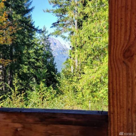 0 White Tail Trail, Hoodsport, WA 98548 (#1396076) :: The Royston Team