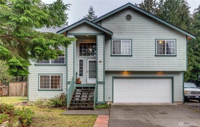 2831 Green Valley Dr, Maple Falls, WA 98266 (#1396370) :: Pickett Street Properties