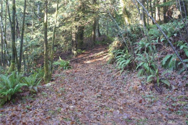 0-NSN Sylvester Lane, Lilliwaup, WA 98555 (#1396994) :: Commencement Bay Brokers