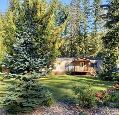 521 Flair Valley Dr, Maple Falls, WA 98266 (#1397249) :: Homes on the Sound