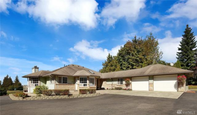 3342 Alm Rd, Everson, WA 98247 (#1397354) :: Keller Williams - Shook Home Group