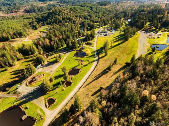16377 Taylor Rd, Mount Vernon, WA 98273 (#1397393) :: Homes on the Sound