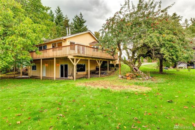 6097 Everson Goshen Rd, Bellingham, WA 98226 (#1397630) :: The Royston Team