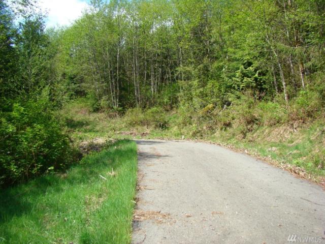 35403 Patriot Lane, Mount Vernon, WA 98274 (#1397962) :: Homes on the Sound