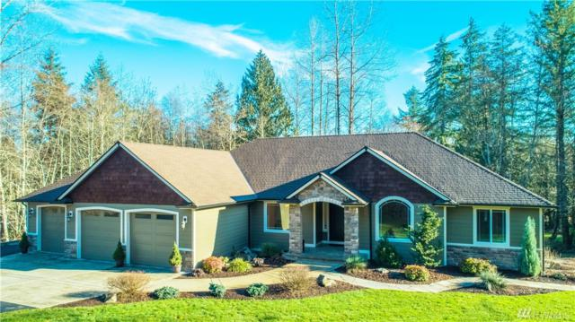 6031 139th Lane SW, Rochester, WA 98579 (#1398729) :: NW Home Experts