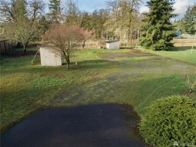 18423 Leon St SW, Rochester, WA 98579 (#1398797) :: NW Home Experts