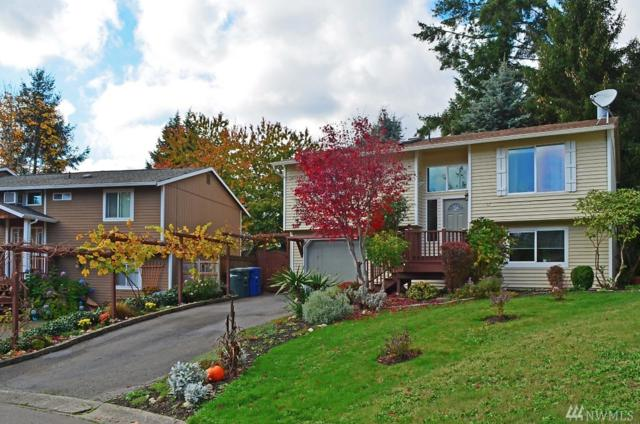 116 239th Place SW, Bothell, WA 98021 (#1398890) :: The Kendra Todd Group at Keller Williams