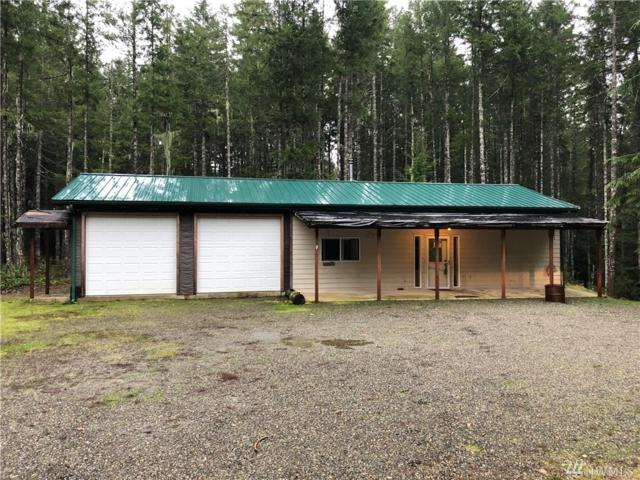 60 N Goldeneye Dr, Hoodsport, WA 98548 (#1398948) :: Better Homes and Gardens Real Estate McKenzie Group