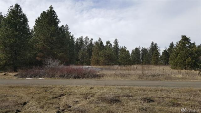 0 S Hatch Rd, Spokane, WA 99224 (#1399250) :: Homes on the Sound