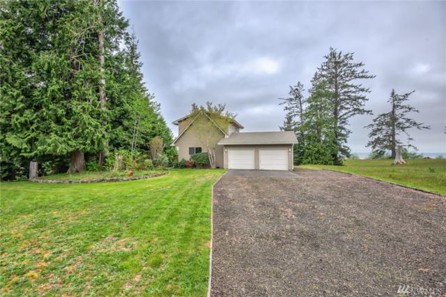 5 Cedar Lane, South Bend, WA 98586 (#1399284) :: Canterwood Real Estate Team