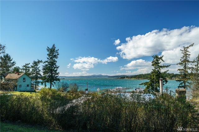 99 Whiskey Hill Rd, Lopez Island, WA 98261 (#1399558) :: Homes on the Sound