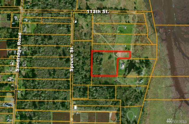 4610 113th St, Long Beach, WA 98631 (#1399641) :: Pickett Street Properties