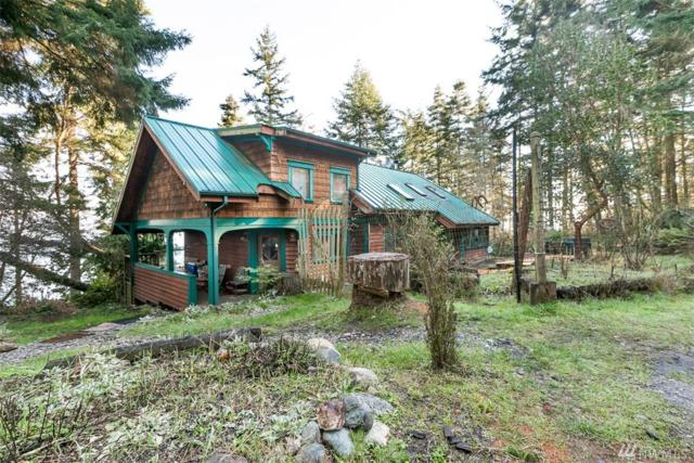655 Race Rd, Coupeville, WA 98239 (#1399843) :: Real Estate Solutions Group