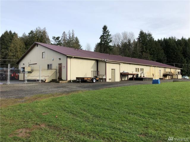 381 Delameter Rd, Castle Rock, WA 98611 (#1399871) :: Homes on the Sound