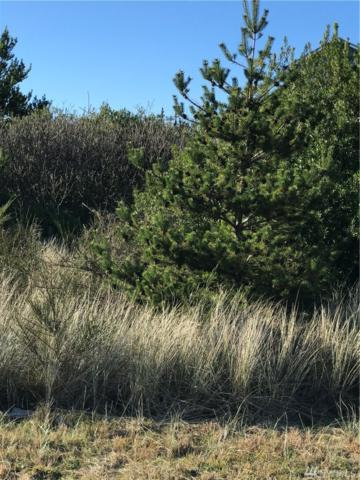709 Ocean Shores Blvd, Ocean Shores, WA 98569 (#1400960) :: Pickett Street Properties